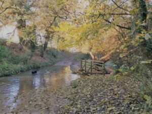 The beck at Thorpe Bassett in Autumn